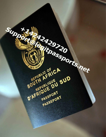 south africa passport 1